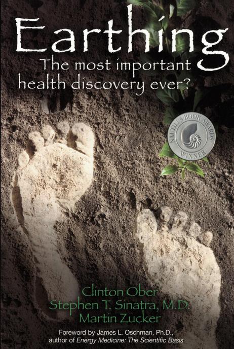EarthingBook